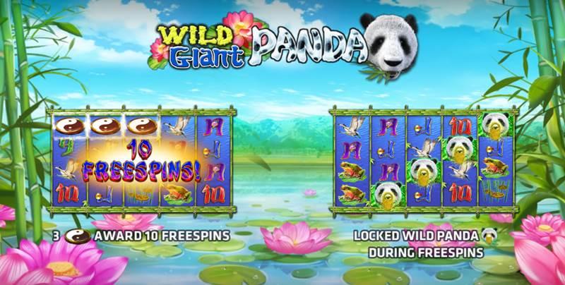 Wild Giant Panda สล็อตจีนหมีแพนด้าจาก Slotxo เกมส์มือถือหาเงินออนไลน์