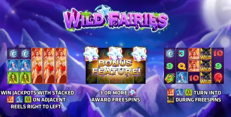 Wild Fairies เกมส์สล็อตภูตสาวสวย แจ็คพอตแตกง่าย เล่นได้กำไรสูง