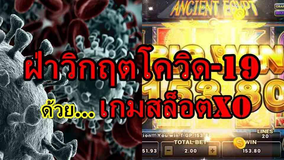รายได้ลดเพราะโควิด-19 หาเงินเพิ่มได้ที่ สล็อตxo เว็บหาเงินออนไลน์ไทยชั้นนำ